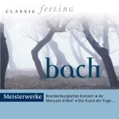 Burkhard Glaetzner - Oboenkonzert in D Minor, BWV 1059R: II. Adagio
