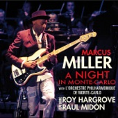 Marcus Miller - So What (Live)