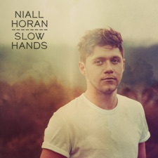 Slow Hands by Niall Horan