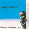 Now or Never - Sankomota