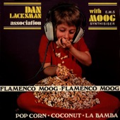 The Flamenco Moog artwork