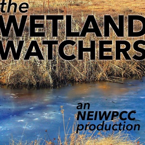The Wetland Watchers