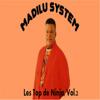 Les Top de Ninja, Vol. 2 - Madilu System
