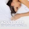 Adult Sleep 50 - Best Peaceful Nature Songs for Beautiful Sleepy Time, Zen Garden Soft Healing Sounds of Nature - Fairy Garden