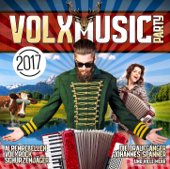 VOLXMusic Party-Various Artists