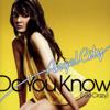 Angel City - Do You Know (I Go Crazy) [BCD Project Remix] artwork