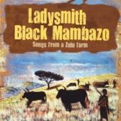 Ladysmith Black Mambazo - Cabhayeye (Puddles)