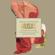 Tú Sí Sabes Quererme (feat. Los Macorinos) - Natalia Lafourcade