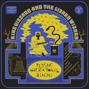 Flying Microtonal Banana Mp3 Download