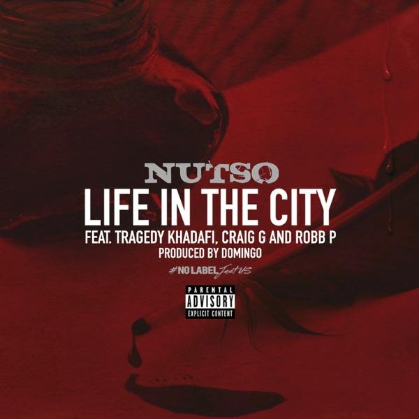 Life In the City (feat. Tragedy Khadafi, Craig G & Robb P.) - Single