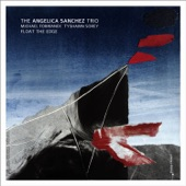 Angelica Sanchez Trio - Black Flutter