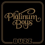 Platinum Boys - Splittin' Hairs