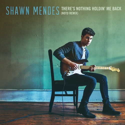 Shawn Mendes - There's Nothing Holdin' Me Back (NOTD Remix) - Single