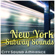 On a Train in Brooklyn - City Sounds Ambience