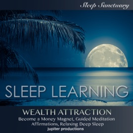Wealth Attraction, Become a Money Magnet: Sleep Learning, Guided  Meditation, Affirmations, Relaxing Deep Sleep
