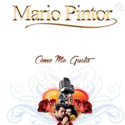 Cómo Me Gusta - Single - Mario Pintor