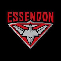 Essendon Football Club's posts