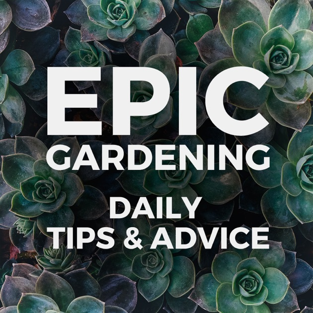 Epic Gardening Daily Growing Tips And Advice By Kevin Espiritu
