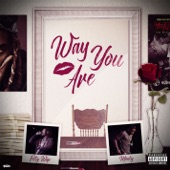 Way You Are (feat. Monty) artwork