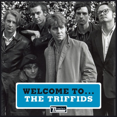Welcome to the Triffids - EP - The Triffids