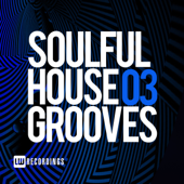 Soulful House Grooves, Vol. 03