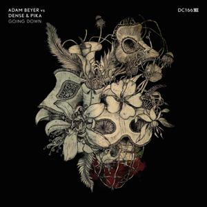 Adam Beyer & Dense & Pika - Going Down