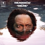 Thundercat - Show You the Way (feat. Michael McDonald & Kenny Loggins)