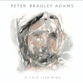 Peter Bradley Adams - Who Else Could I Be