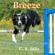 C. S. Bills - Breeze: Capturing the Heart of Dog Agility, Book 1 (Unabridged)