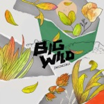 Big Wild - When I Get There
