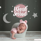 Baby Sleep Aid Music (30 Min.) - EP