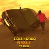 Pe Sosele (feat. Puya) - Single, Cally Roda