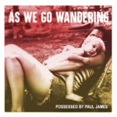 Possessed By Paul James - When It Breaks