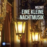Eine kleine Nachtmusik - Nikolaus Harnoncourt & Concentus Musicus Wien - Nikolaus Harnoncourt & Concentus Musicus Wien