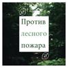 Ирина Северова - Против лесного пожара - Нежная музыка, со звуками леса, пение птиц, мягкий дождь обложка