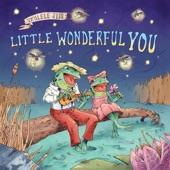 Ukulele Jim - Little Wonderful You