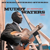 Muddy Waters - Muddy Waters At Newport 1960  artwork