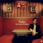 Jamie Cullum - The Age of Anxiety