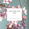 Waiting for You feat Anjali Single