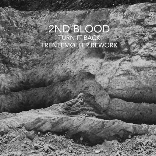 Turn It Back (Trentemøller Rework) - Single by 2nd Blood
