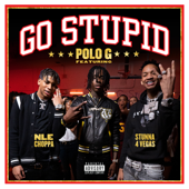 Go Stupid - Polo G, Stunna 4 Vegas, NLE Choppa & Mike WiLL Made-It Cover Art