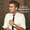 Joseph Vincent - A Whole New World artwork