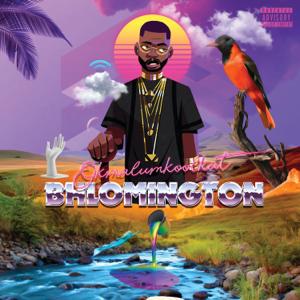 Okmalumkoolkat - Bhlomington - EP