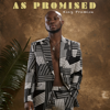 King Promise - My Lady artwork
