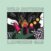 Wild Nothing - Sleight of Hand
