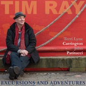Tim Ray/Terri Lyne Carrington/John Patitucci - Paint It, Black