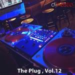 The Plug, Vol. 12 (DJ Mix)