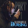 Saldokamelia - Burning, Pt. 1 - EP illustration