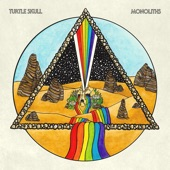 Turtle Skull - Heartless Machine