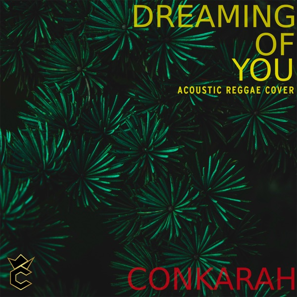 Dreaming of You (Acoustic Reggae Cover) - Single